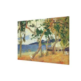 By the Seashore, Martinique, 1887 (oil on canvas) Canvas Print