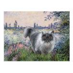 By the Seine - Blue Smoke Persian cat Postcard