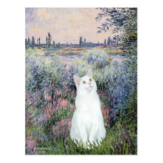 By the Seine - White cat Postcard