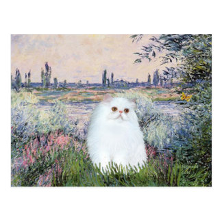 By the Seine - White Persian kitten #49 Postcard