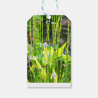 ByThe Pond Gift Tags