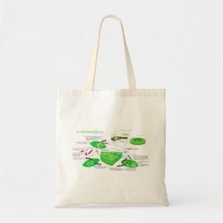 C4 Photosynthesis Diagram Budget Tote Bag