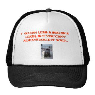 c7f105dbda83b6de, You can lead a dog on a leash... Cap