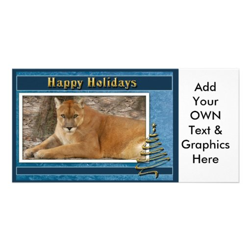 c-2011-cougar-005 picture card