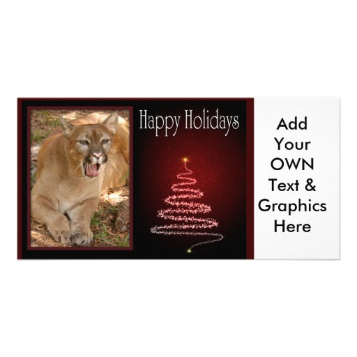 c-2011-cougar-009 photo greeting card