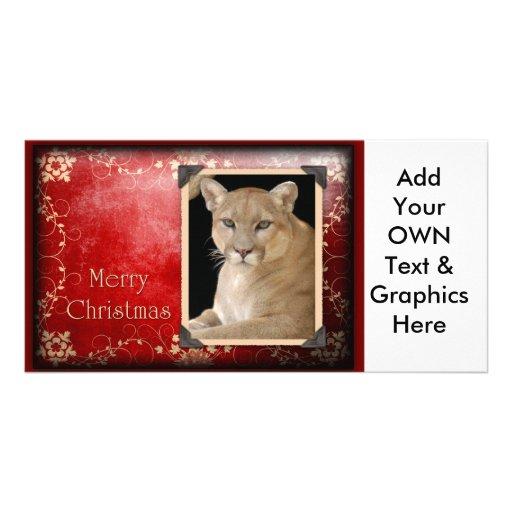 c-2011-cougar-026 customized photo card