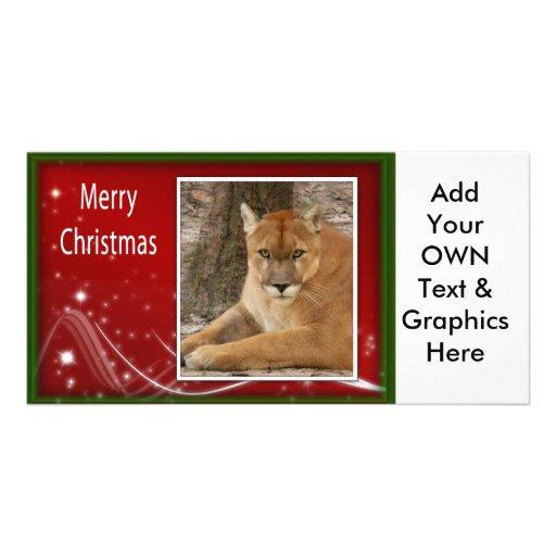 c-2011-cougar-029 photo card template