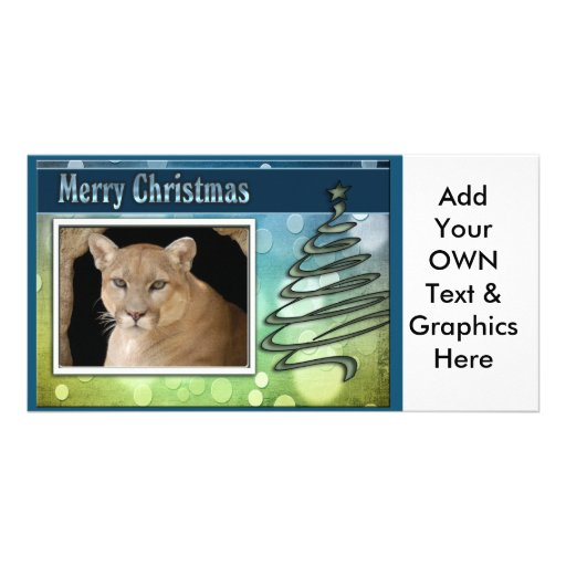 c-2011-cougar-038 picture card