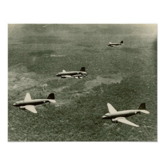 C-47s and P-40 s Posters