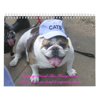 C.A.T.S. Calendar 2009