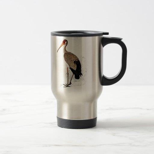 C G Finch-Davies Yellow Billed Stork Stainless Steel Travel Mug