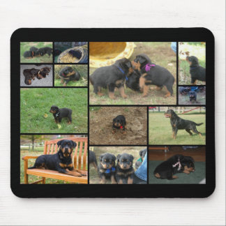 C Litter puppy collage Mouse Mat