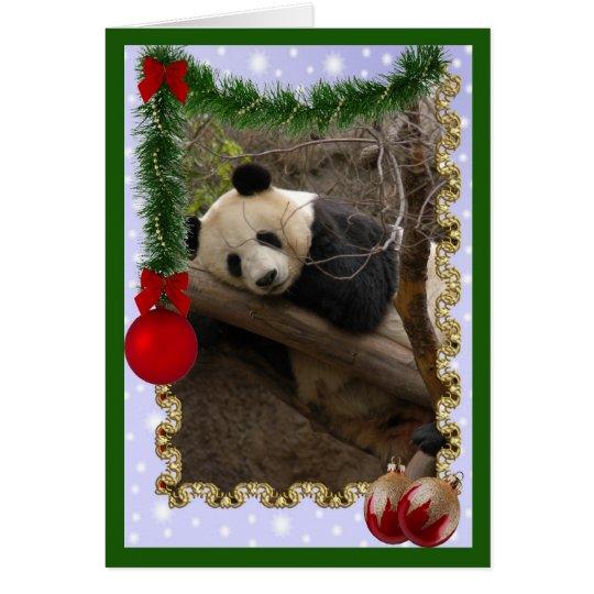 c-panda-21-c card