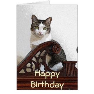 CA- Birthday Kitty Card