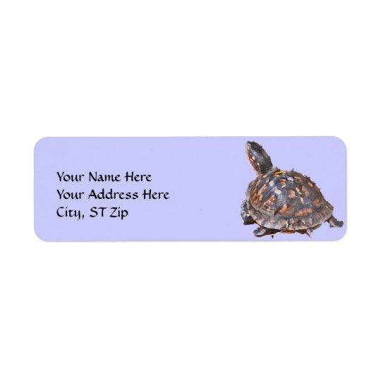 CA- Box Turtle Address Label.. Return Address Label