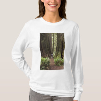 CA, Jedediah Smith Redwoods State Park, T-Shirt