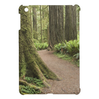 CA, Jedediah Smith State Park, Simpson-Reed iPad Mini Cover