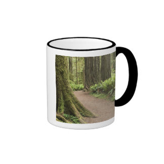CA, Jedediah Smith State Park, Simpson-Reed Ringer Mug