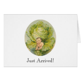 Cabbage Birth Announcement Note Card