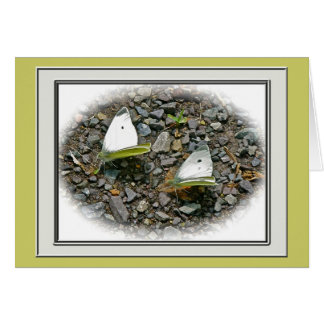 Cabbage Butterflies Note Card