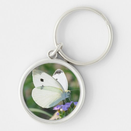 Cabbage Butterfly Key Chain