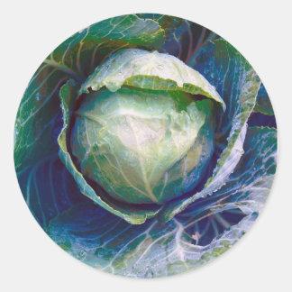 Cabbage Round Sticker
