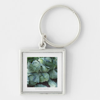 Cabbage Silver-Colored Square Key Ring