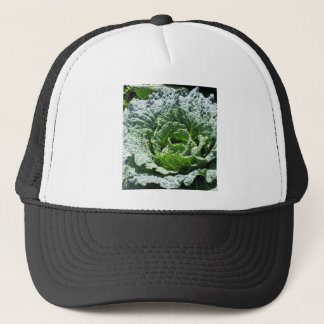 Cabbage Trucker Hat