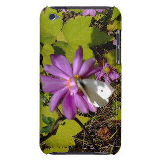 Cabbage White Butterfly on Anemone iPod Case-Mate Case
