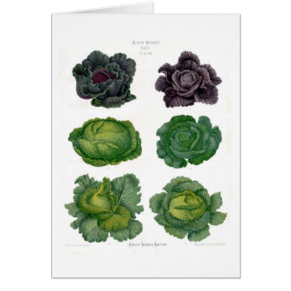 Cabbages Greeting Card