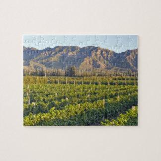 Cabernet Sauvignon vines in Huailai Rongchen 2 Jigsaw Puzzle