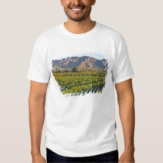 Cabernet Sauvignon vines in Huailai Rongchen 2 T-shirts