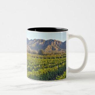 Cabernet Sauvignon vines in Huailai Rongchen 2 Two-Tone Coffee Mug
