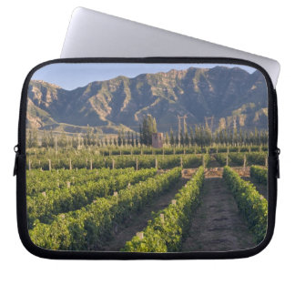 Cabernet Sauvignon vines in Huailai Rongchen Laptop Sleeve