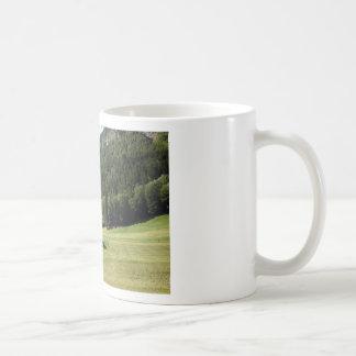 Cabin located in a scenic location basic white mug