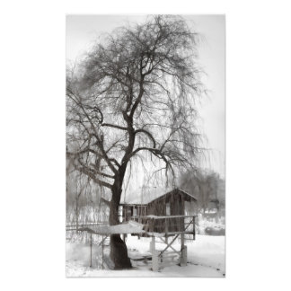 Cabin photo print