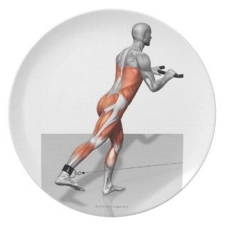 Cable Skater Exercise Dinner Plates
