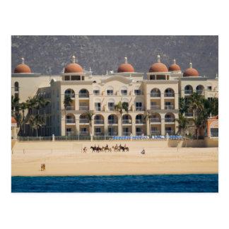 Cabo San Lucas 21 Postcard
