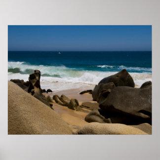 Cabo San Lucas beach 27 Print