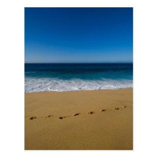 Cabo San Lucas beach 2 Postcard