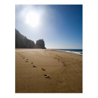 Cabo San Lucas beach 3 Postcard
