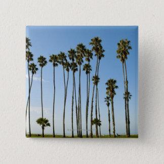 Cabrillo Avenue, Santa Barbara, California 15 Cm Square Badge