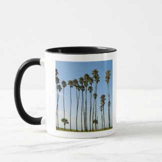 Cabrillo Avenue, Santa Barbara, California Mug