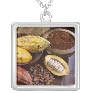 Cacao pod containing cacao beans which are silver plated necklace
