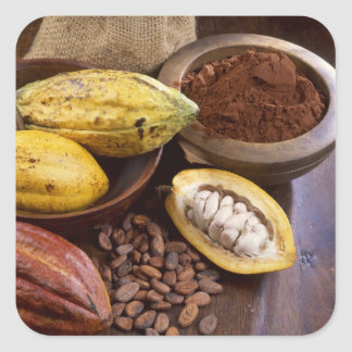 Cacao pod containing cacao beans which are square sticker