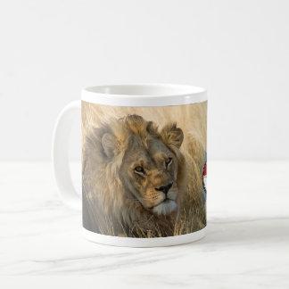 CACH SCOTLAND LION MUG