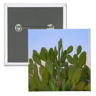 Cacti and sisal in Dry Forest 15 Cm Square Badge