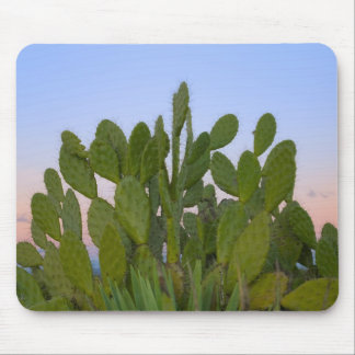 Cacti and sisal in Dry Forest Mouse Pad
