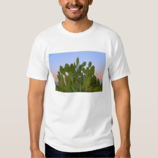 Cacti and sisal in Dry Forest Tshirts