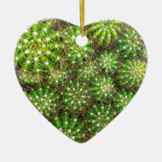Cacti Dble-sided Heart Ornanent Christmas Ornament